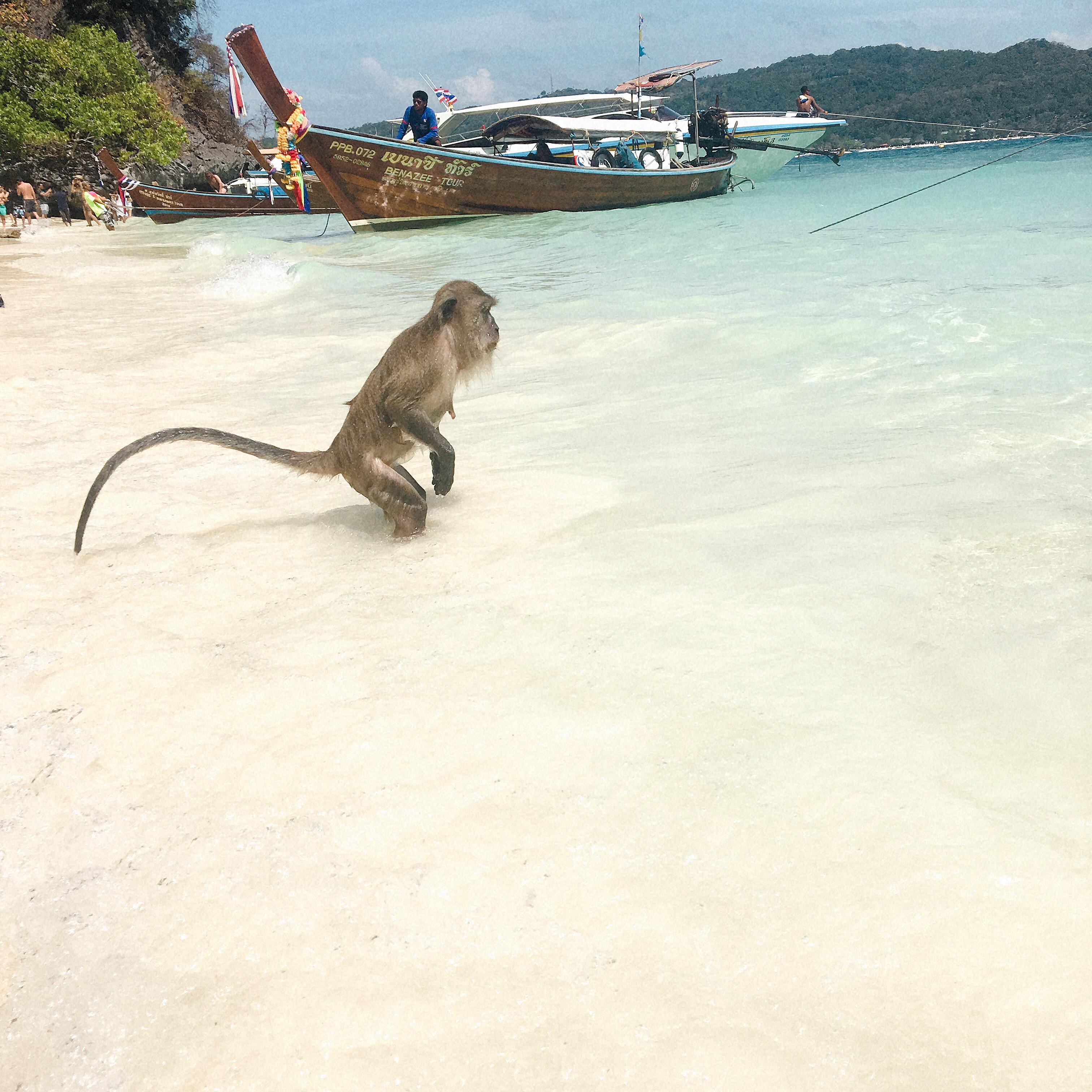 タイの女子旅!行って良かった観光名所と私が体験した珍事件