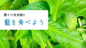 藍の葉は食べられる!?驚きの効能とは